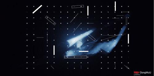 TEDxDongWuU 2021 年度大會:解構 image